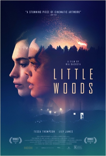 Little Woods (2019) English 300MB HDRip 480p x264