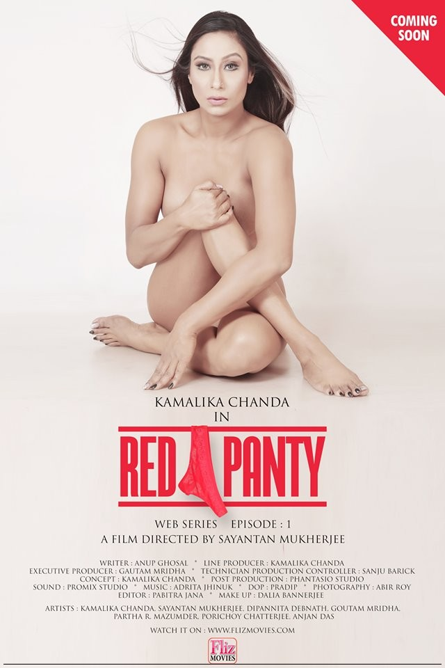 18+ Red Panty (2019) S01 Part3 Hindi Hot Complete Web Series 720p HDRip 250MB
